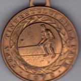 Medalie sport UTC CUPA TINERETULUI DE LA SATE 1972-OINA- locul III - Medalii Romania