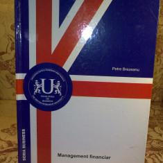 Petre Brezeanu - Management financiar - Carte Management