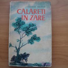 CALARETI IN ZARE - GEORGE NESTOR, EDITURA TINERETULUI 1963, PG. 328, coperta putin uzata in rest stare buna - Roman