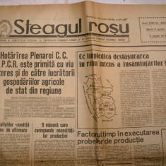 Ziarul Steagul Rosu 4 aprl.1967 - Revista vintage