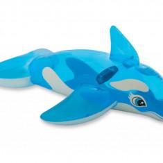 Delfin Gonflabil