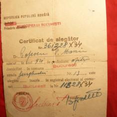 Certificat Alegator cca.1949 cu stampila Votat, in RPR - Diploma/Certificat