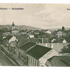 928 - Alba, SEBES ALBA - old postcard - used - 1916 - Carte Postala Transilvania 1904-1918, Circulata, Printata