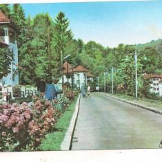 #carte postala(ilustrata)-OLANESTI-vedere - Carte Postala Oltenia dupa 1918, Circulata, Printata