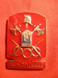 Medalie- Pompieri - araba , metal si email . h=4,5 cm