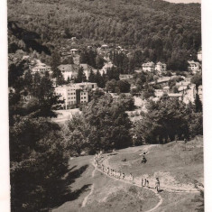 #carte postala(ilustrata)-OLANESTI - Carte Postala Oltenia dupa 1918, Circulata, Printata