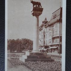 CP - Vedere - Timisoara - '47 - Carte Postala Banat dupa 1918