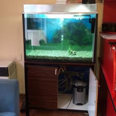 Vand acvariu pentru pesti 360 l - Acvariu si terariu, >300