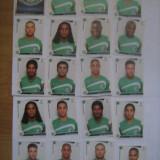 PANINI - Champions League 2009-2010 / Maccabi Haifa (20 stikere) - Colectii