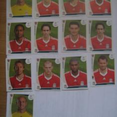 PANINI - Champions League 2009-2010 / Liverpool (13 stikere)