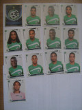PANINI - Champions League 2009-2010 / Maccabi Haifa (13 stikere)