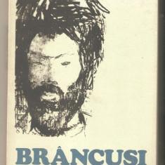 Nina Stanculescu-BRANCUSI - Carte sculptura