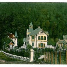 918 - Arad, MONEASA - old postcard - used - 1913 - Carte Postala Banat 1904-1918, Circulata, Printata