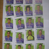 PANINI - Champions League 2009-2010 / Fiorentina (20 stikere) - Colectii