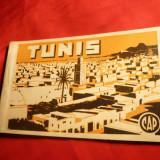 Carnet 12 Ilustrate Tunis, interbelica - Carte postala tematica, Necirculata, Printata, Europa