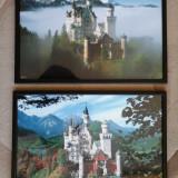 Set compus din 2 tablouri (NEWSVEINSTEIN vara si iarna)) - Reproducere