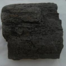 Raritate ! Bucata de lemn, foarte veche, peste 200 de ani, pietrificata, dimensiuni 15, 5x15x7 cm, piesa de colectie/decor ! - Arta din Africa