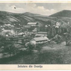 IPV 353 ORAVITA