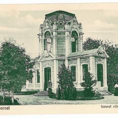 11 - Bucovina, Suceava, VATRA DORNEI, izvoare minerale - old postcard - unused - Carte Postala Bucovina 1904-1918, Necirculata, Printata