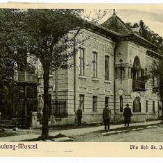 9 - Arges, CAMPULUNG, vila Iorgulescu - old postcard - used - 1936