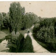 211 - Dolj CRAIOVA, parcul Bibescu - old postcard, real PHOTO - used - 1930
