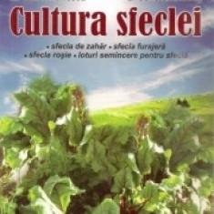 M. Constantinescu, E. Constantinescu - Cultura sfeclei