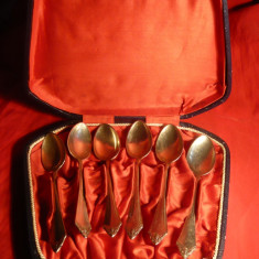 Caseta cu 6 ligurite alpaca argintata marcaj HS ,inc.sec.XX  ,L= 14,2 cm