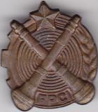 Insigna Rara FPCI - Formatie de paza contra incendiilor
