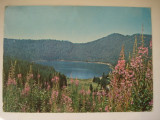 Carte  postala (Vedere )  -  Jud.  Harghita - Lacul  Sfanta  Ana
