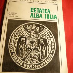 Monografie Alba Iulia -I.Berciu, Al.Popa, H.Ursu - Ed.IIa 1968 - Carte Monografie