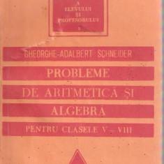 Gheorghe Adalbert Schneider-Probleme de aritmetica si algebra pentru clasele V-VIII