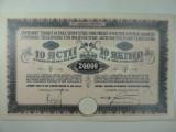ACTIUNI -  FABRICA DE TIGLE - MUSCHONG - SANTAMBRU - 20000LEI - 1924 - RARITATI