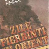 Craciun Ionescu-Zile fierbinti in orient - Istorie