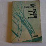 In iarba cu fata la soare - Banu Radulescu - Cartea Romaneasca - 1989