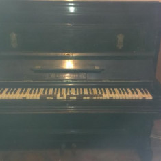 Pianina Altele Ludwig Simon Ulm an 1886