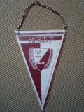 Fanion C.S. CFR Timisoara 1933 echipa club de fotbal romania fan sport colectie