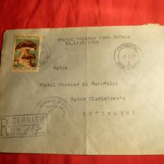 Plic circ. de la Cernatu (Reg.Stalin) Recomandat la Bucuresti, cu timbru 1, 75 lei ciuperci