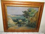 ULEI CARTON BALCIC SEMNAT GHEORGHE IONESCU DORU 1889-1988 deosebit, Peisaje, Impresionism