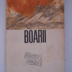BOARII - Ada Orleanu - Nuvela