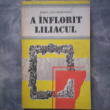 RODICA OJOG BRASOVEANU - A INFLORIT LILIACUL C5 187 - Roman, Anul publicarii: 1990