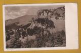 CHEILE ZANOAGA DAMBOVITA 1942