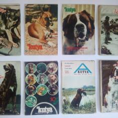 Lot 8 reviste unguresti - a KUNYA - CAINELE - anii '70 - Revista casa