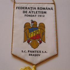 Fanion Federatia Romana de Atletism - Fanion atletism