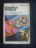 ALEXANDRU NICA - CERAMICA TEHNICA
