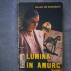 XAVIER DE MONTEPIN - LUMINA IN AMURG C7 320 - Roman, Anul publicarii: 1992