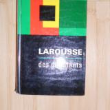 MIC DICTIONAR LAROUSSE - ILUSTRAT FRUMOS - DE BUZUNAR