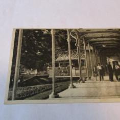 Cp.312-VEDERE DIN BAILE HERCULANE_TERASA - Carti Postale Romania dupa 1918, Circulata, Fotografie