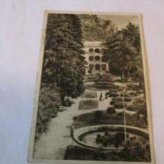 Cp.313-VEDERE DIN BAILE HERCULANE_PARCUL - Carte Postala Banat dupa 1918, Circulata, Fotografie