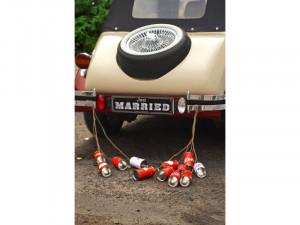 Decoratiuni masini nunta