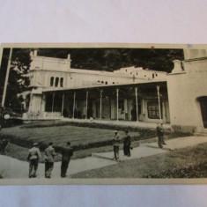 Cp.314-VEDERE  DIN BAILE HERCULANE_PARCUL SI TERASA, Circulata, Fotografie